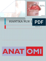 Riantika LBM 3 THT.pptx