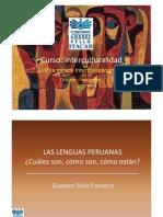 Presentacion_Gustavo_Solis_Curso_II_Intercultural.pdf