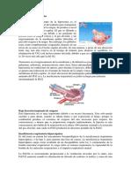 Alteración de la difusión neumologia