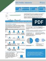 Profil SDG's Indonesia 2017