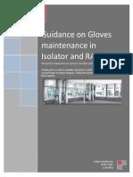 Gloves Maintenance Version 00