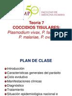 Teoría 7 Plasmodium USMP -IIF