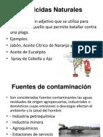 Pesticidas Naturales