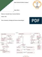 Anatomía y fisiología del sistema inmunológico.