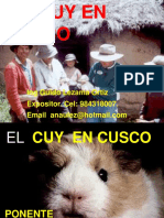 INIA CUYES EXPO.ppt