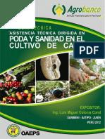 Cultivo Café - Poda y Sanidad