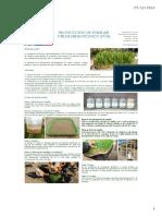 Producción-de-forraje-verde-hidropónico.pdf