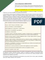 Lectura La RESPIRACION.docx