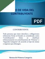 PPT1 - CONTRIBUYENTE