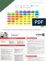 2017-Lic-Fisioterapia-plan-de-estudios (1).pdf