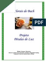 Apost_Petalas_de_Luz_11072005.pdf