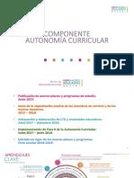 Componente autonomía curricular.pdf