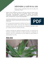 Plantas Medicinales y Cual Es Su Uso