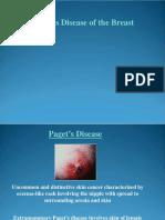 Paget's Disease pp.pdf