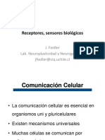 Receptores_2018_estudiantes_I_y_II.pdf