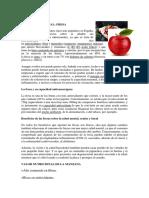 Valor Nutricional de Frutos