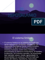 El hipotalamo y el sistema limbico
