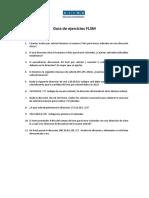 Guía de Ejercicios FLSM