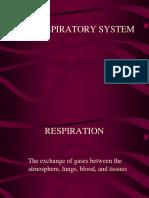 Respiratory System Anatomy & Physiology