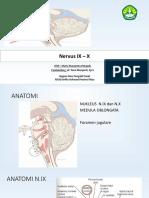 Ppt Referat Nervus IX Dan X