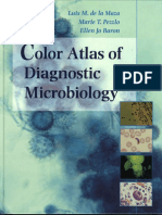 color-atlas-of-diagnostic-microbiology.pdf