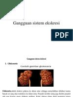 Gangguan Sistem Ekskresi Pp