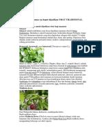 10 Flora Dan Fauna Yg Dapat Dijadikan OBAT TRADISIONAL