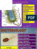 190616321-Bacteria.pdf