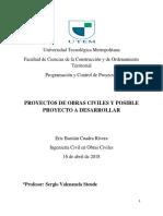 Eric Cuadra, Informe Individual de Programacion y Control de Proyectos