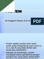 Protein 01 [3]