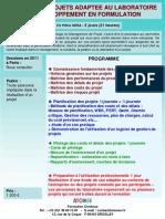 Formation Continue Gestion de Projets Au ire 2011