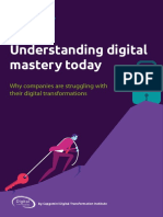 Digital Mastery DTI Report_20180704_web