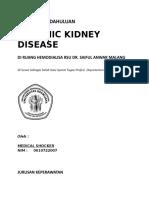 14558331-Laporan-Pendahuluan-Chronic-Kidney-Disease-CKD.doc