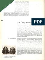 História geral da arte no Brasil (PAG 984- PAG 991).pdf