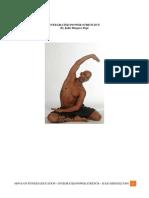 Integrated Stretch Manual.pdf