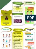Leaflet Psikosis Epilepsi
