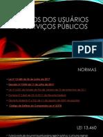 Apresentação Cheryl Berno_Direito Do Usuário de Serviços Públicos