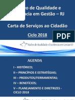 Apresentação  Luiz Fernando Bergamini  - Carta de Serviços ao Cidadão