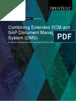 SAP Extended ECM Solution Accelerator for SAP DMS