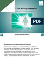 Tema 8. Introduccion al metabolismo.pdf