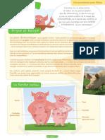 fiche-cochons-eleves.pdf