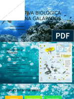 Reserva Biológica Marina Galápagos