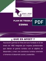 03-AFEET-PERU-ESNNA