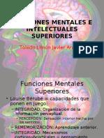 19598758 Funciones Mentales e Intelectuales Superiores