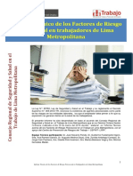 Informe Tecnico Prl Psicosocial- Muni Lima
