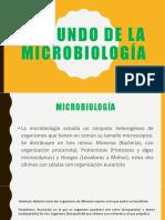 Conceptos Basicos de La Microbiología