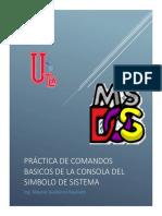 Practica Comandos DOS.pdf