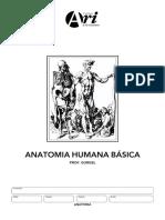 gabarito_manual_anatomia2.pdf