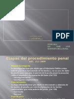 Estructura_del_proceso_CNPP.pptx