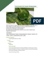 informe-1-fisiologia